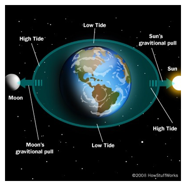 the closeness of the moon to earth can turn tides The earth's rotation and the gravitational pull of the sun and moon create tides because the moon is much closer to earth than the sun, the moon exert s a much stronger gravitational pull the earth's ocean s respond to the moon's gravitational pull by bulging and dipping as the moon rotate s around the earth.